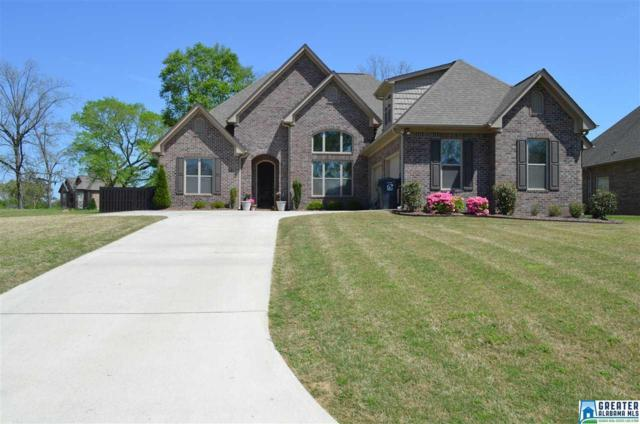 20 Willow Branch Rd, Odenville, AL 35120 (MLS #818607) :: Josh Vernon Group