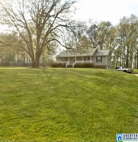 7681 John Pelham Trl, Mccalla, AL 35111 (MLS #818916) :: Jason Secor Real Estate Advisors at Keller Williams