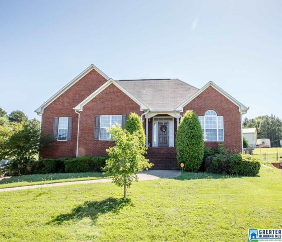 9275 Promise Trl, Kimberly, AL 35091 (MLS #819076) :: Williamson Realty Group