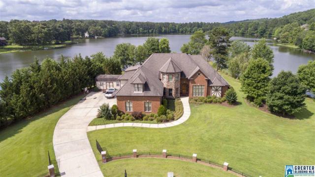 7781 Big Sky Cove, Mccalla, AL 35111 (MLS #819571) :: Jason Secor Real Estate Advisors at Keller Williams