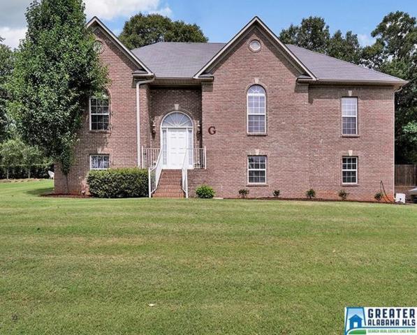 110 Oakview Ln, Odenville, AL 35120 (MLS #819787) :: Josh Vernon Group