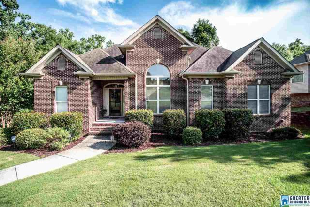 224 Lime Creek Ln, Chelsea, AL 35043 (MLS #820123) :: Jason Secor Real Estate Advisors at Keller Williams