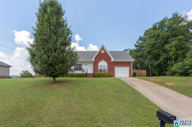 7395 Old Acton Rd, Odenville, AL 35120 (MLS #820169) :: Josh Vernon Group