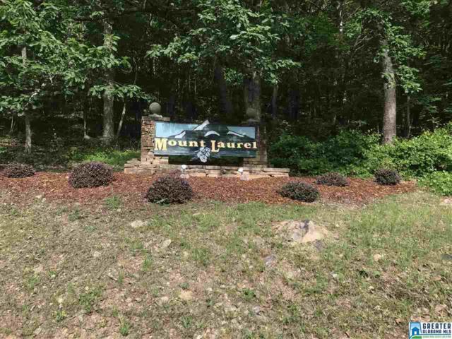 Laurel Cir #0, Jacksonville, AL 36265 (MLS #820174) :: The Mega Agent Real Estate Team at RE/MAX Advantage