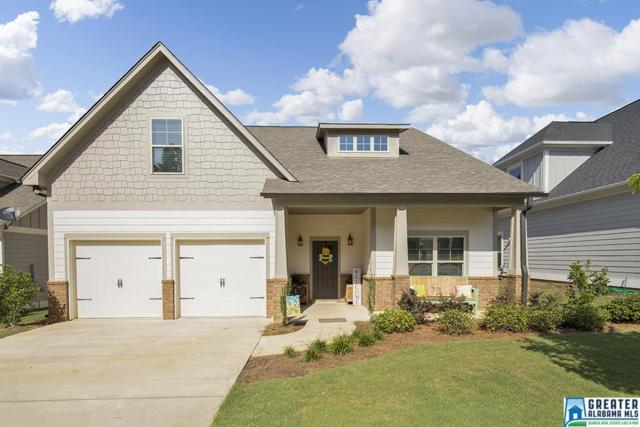 385 Braddock Rd, Springville, AL 35146 (MLS #820194) :: Josh Vernon Group