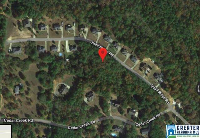 6620 Trussville Clay Rd 4.0 Acres, Trussville, AL 35173 (MLS #820329) :: Brik Realty