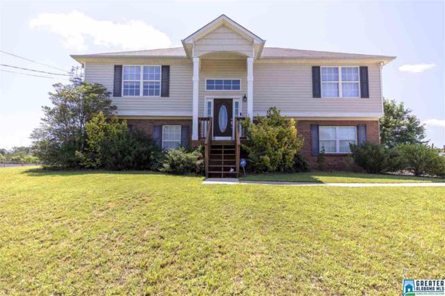 160 Hidden Ridge, Odenville, AL 35120 (MLS #821418) :: Josh Vernon Group