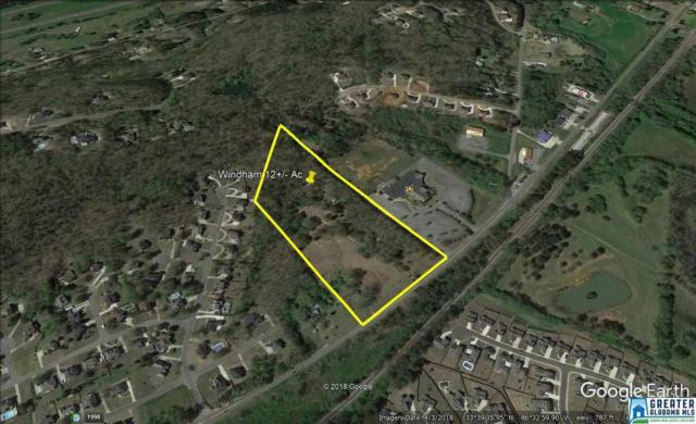 8080 Gadsden Hwy, Trussville, AL 35173 (MLS #822418) :: Williamson Realty Group