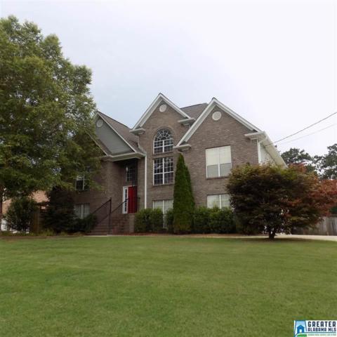 160 Oakview Ln, Odenville, AL 35120 (MLS #822957) :: Josh Vernon Group
