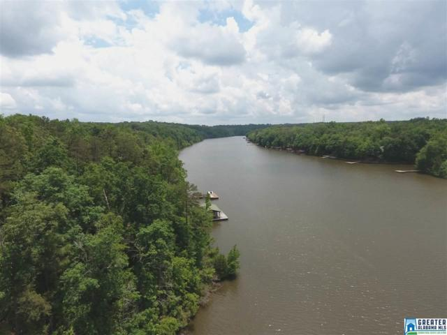 Co Rd 499 34 Ac., Wedowee, AL 36278 (MLS #823342) :: Howard Whatley