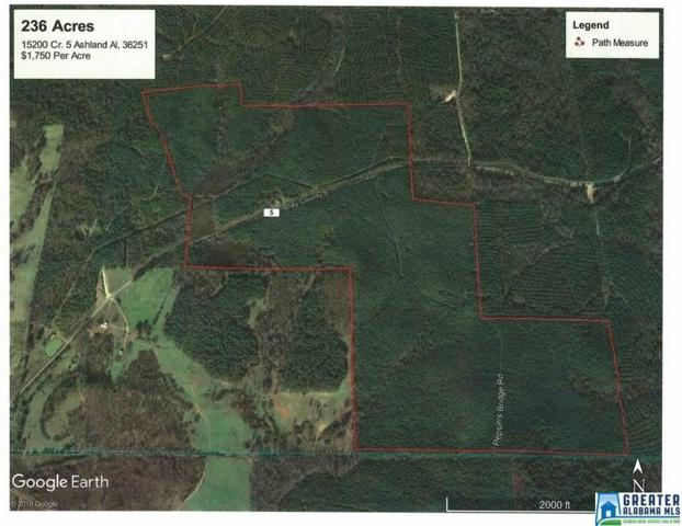 15200 Co Rd 5 236 Ac., Ashland, AL 36251 (MLS #823979) :: Brik Realty