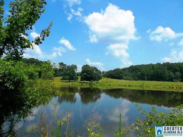 Hwy 77 238 Acres, Ashland, AL 36251 (MLS #824512) :: Brik Realty
