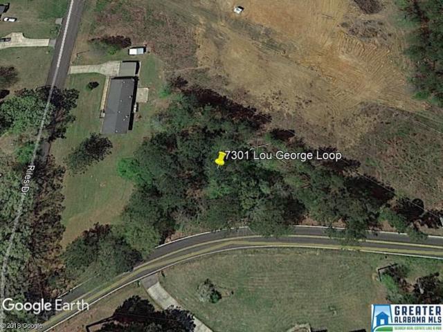 7301 Lou George Loop #0, Bessemer, AL 35022 (MLS #825348) :: Brik Realty