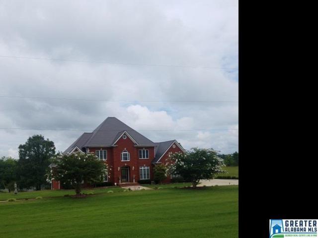 2475 Co Rd 24, Springville, AL 35146 (MLS #826262) :: Josh Vernon Group