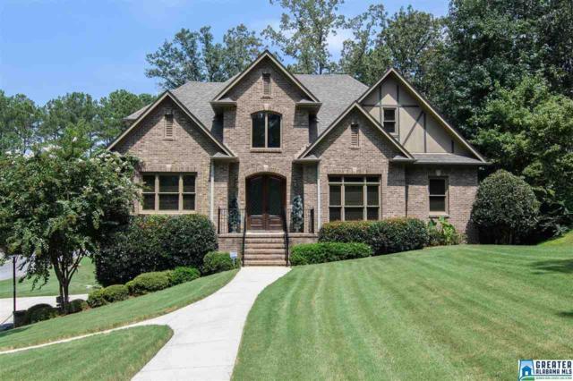 201 Liberty Ln, Chelsea, AL 35043 (MLS #826294) :: The Mega Agent Real Estate Team at RE/MAX Advantage