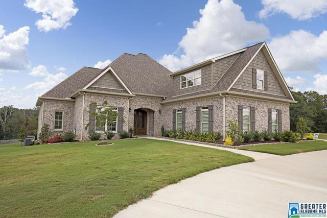 1536 Village Springs Rd, Springville, AL 35146 (MLS #828447) :: Josh Vernon Group