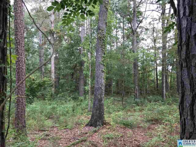 College St Part Of 24 And , Glencoe, AL 35905 (MLS #828463) :: Gusty Gulas Group
