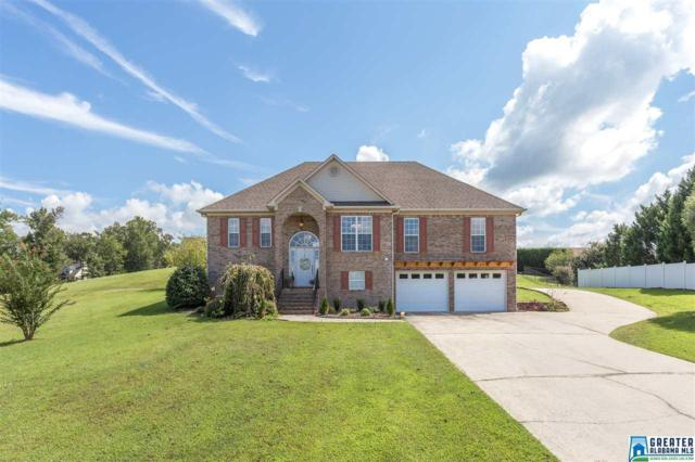816 Mountain View Dr, Oneonta, AL 35121 (MLS #828716) :: Josh Vernon Group
