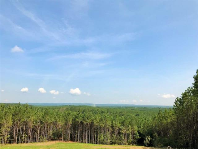 282 Hwy 69 #9, Chelsea, AL 35043 (MLS #829044) :: Howard Whatley