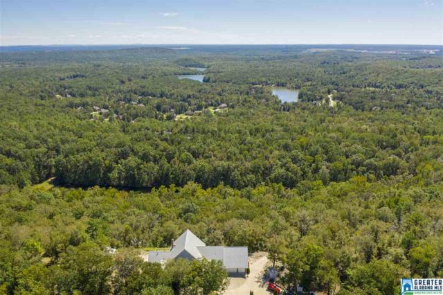 327 Ridgeview Lake Rd, Alabaster, AL 35007 (MLS #829137) :: Howard Whatley