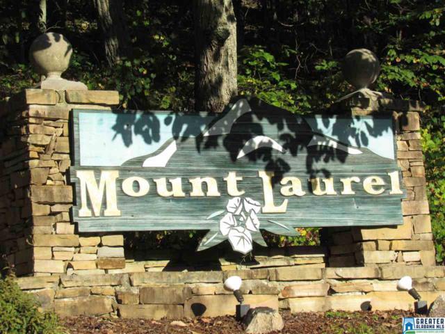 0 Laurel Cir #57, Jacksonville, AL 36265 (MLS #829215) :: LIST Birmingham