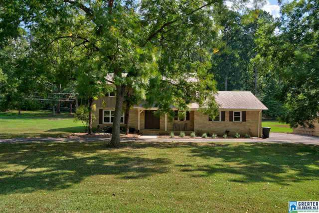 1070 Valley Trl, Warrior, AL 35180 (MLS #829589) :: Gusty Gulas Group