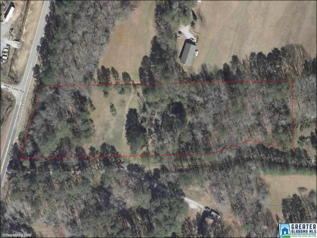 1391 Dunnavant Valley Rd 4.09 Acre/ Lot , Birmingham, AL 35242 (MLS #832116) :: The Mega Agent Real Estate Team at RE/MAX Advantage