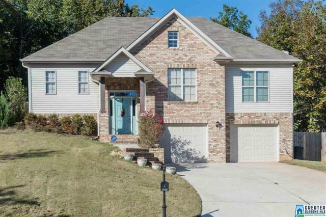 5893 Mcashan Ridge Rd, Mccalla, AL 35111 (MLS #832734) :: Josh Vernon Group