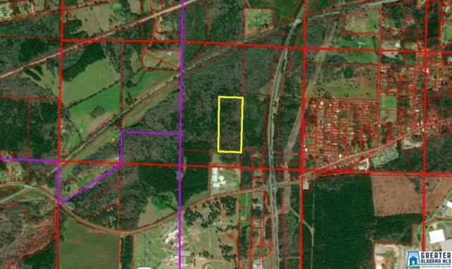 13 Acres Renfroe Rd 13 Acres, Talladega, AL 35160 (MLS #833320) :: The Mega Agent Real Estate Team at RE/MAX Advantage