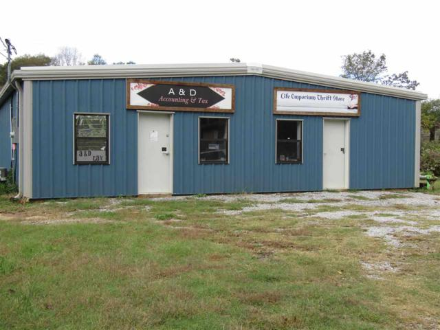264 & 266 Chestnut St, Roanoke, AL 36274 (MLS #833399) :: JWRE Birmingham