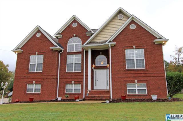 200 Creekview Ln, Lincoln, AL 35096 (MLS #833640) :: Josh Vernon Group