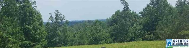 416 Co Rd 367 #50, Crane Hill, AL 35053 (MLS #833984) :: The Mega Agent Real Estate Team at RE/MAX Advantage