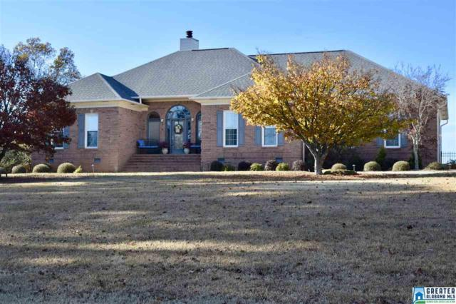 855 Grandview Trl, Warrior, AL 35180 (MLS #834345) :: Gusty Gulas Group