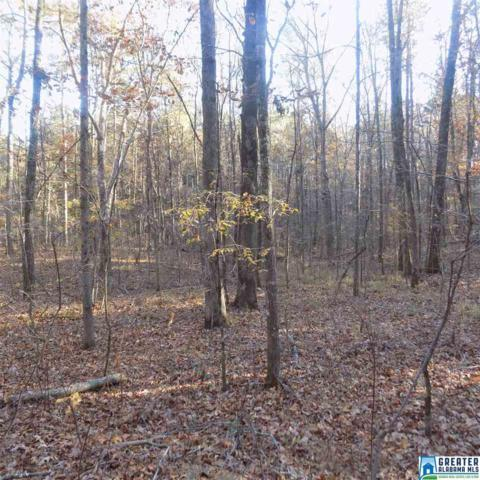 Miracle Hills Rd 23 Acres, Springville, AL 35146 (MLS #834733) :: Josh Vernon Group