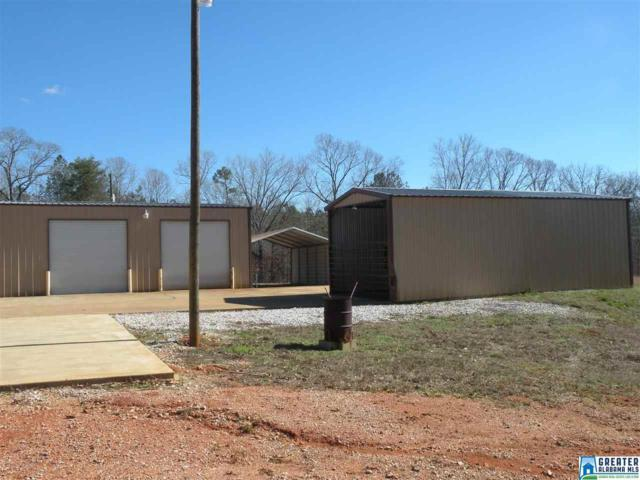 91 Rolling Mountain Rd, Rockford, AL 35136 (MLS #834789) :: Brik Realty