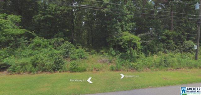 2413 Hackberry Ln Lot 1,Blk 25, R, Hoover, AL 35226 (MLS #835533) :: LIST Birmingham