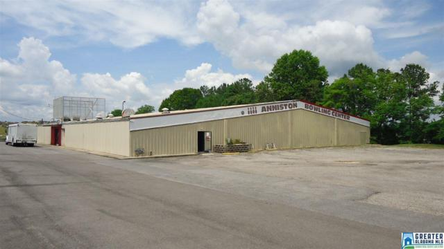 321 Blue Mountain Rd, Anniston, AL 36201 (MLS #835670) :: Gusty Gulas Group