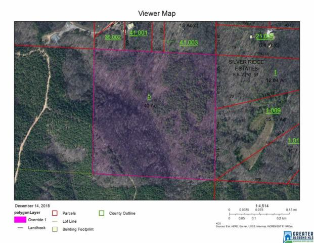 0 Co Rd 574 40 ACRES, Hanceville, AL 35077 (MLS #835765) :: Gusty Gulas Group