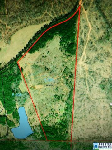 Co Rd 48 Acres Coosa , Rockford, AL 35136 (MLS #836377) :: Brik Realty