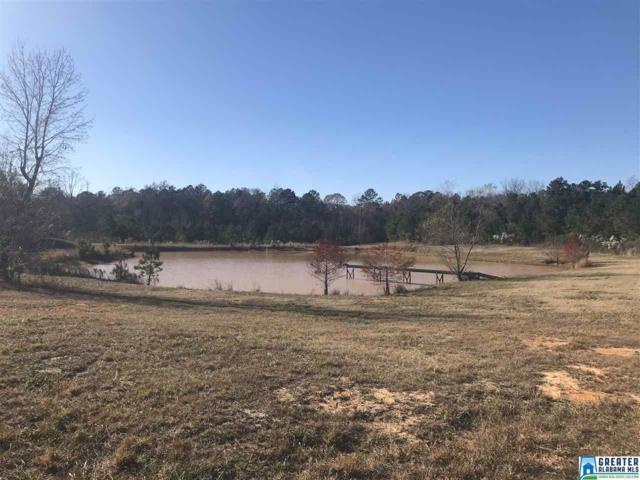 Co Rd 61 #1, Equality, AL 36026 (MLS #836528) :: Brik Realty
