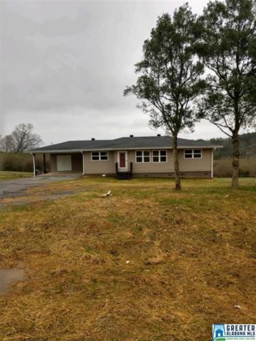 3251 Co Rd 13, Locust Fork, AL 35049 (MLS #837492) :: Josh Vernon Group