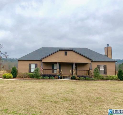 4838 Pleasant Valley Rd, Ashville, AL 35953 (MLS #837598) :: Brik Realty
