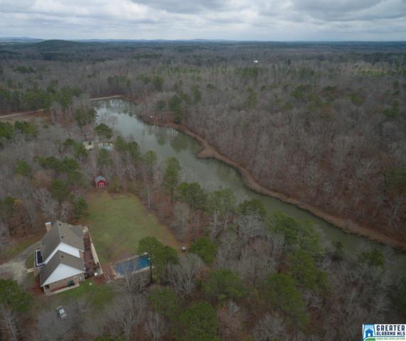 426 Branch Lake Dr, Chelsea, AL 35043 (MLS #837765) :: Gusty Gulas Group