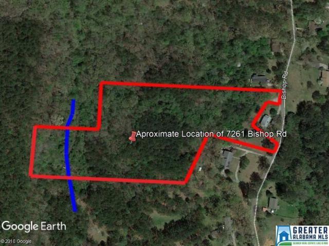 7261 Bishop Rd 10 Acres, Bessemer, AL 35022 (MLS #838119) :: Brik Realty