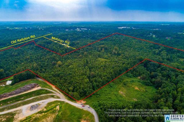 +/- 64 acres Old Kellyton Road +/- 64 Acres, Alexander City, AL 35010 (MLS #838553) :: LocAL Realty