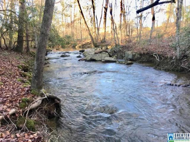 +/- 58 acres Hwy 9 +/- 58 Acres, Goodwater, AL 35072 (MLS #838566) :: Brik Realty