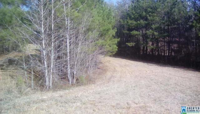 0 Clements Rd 45, 46, Cottondale, AL 35453 (MLS #840613) :: Brik Realty