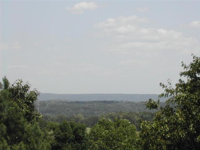 4608 Scenic View Trc 12 Acres, Hoover, AL 35244 (MLS #840711) :: Gusty Gulas Group