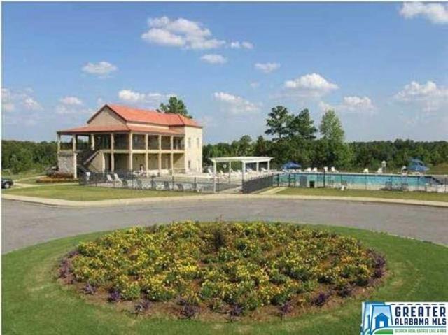 1988 Cyrus Cove Terr, Hoover, AL 35244 (MLS #840723) :: The Mega Agent Real Estate Team at RE/MAX Advantage