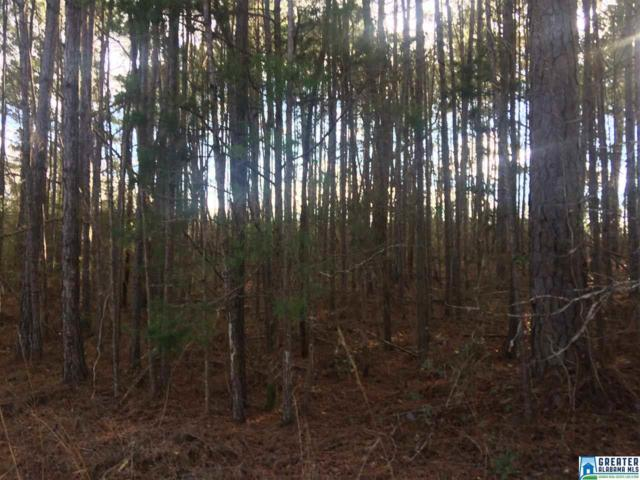 0 Booger Hollow Rd #1, Dadeville, AL 36853 (MLS #840817) :: Gusty Gulas Group